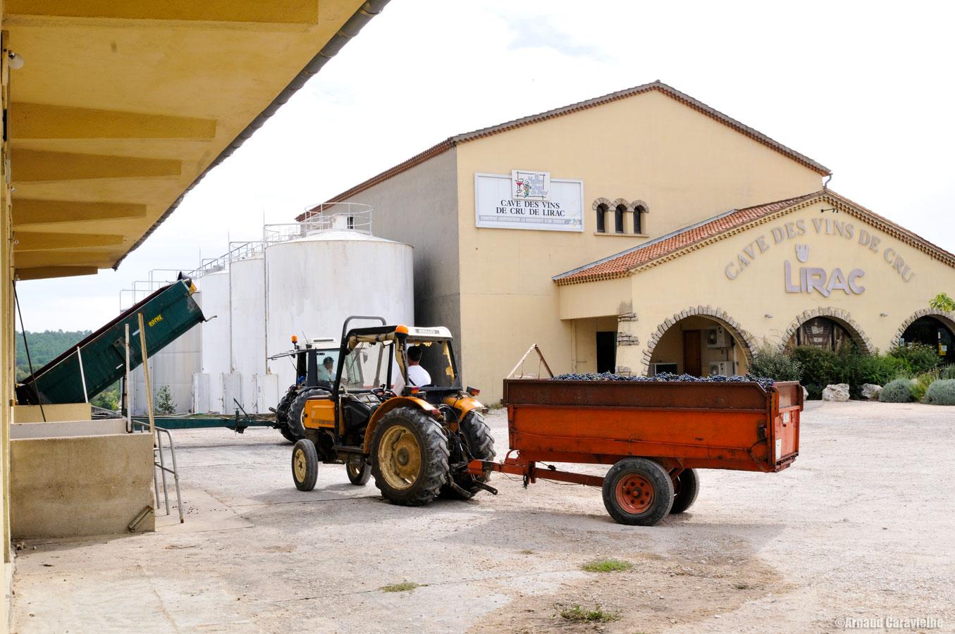 Reportage cave des vins de cru de Lirac