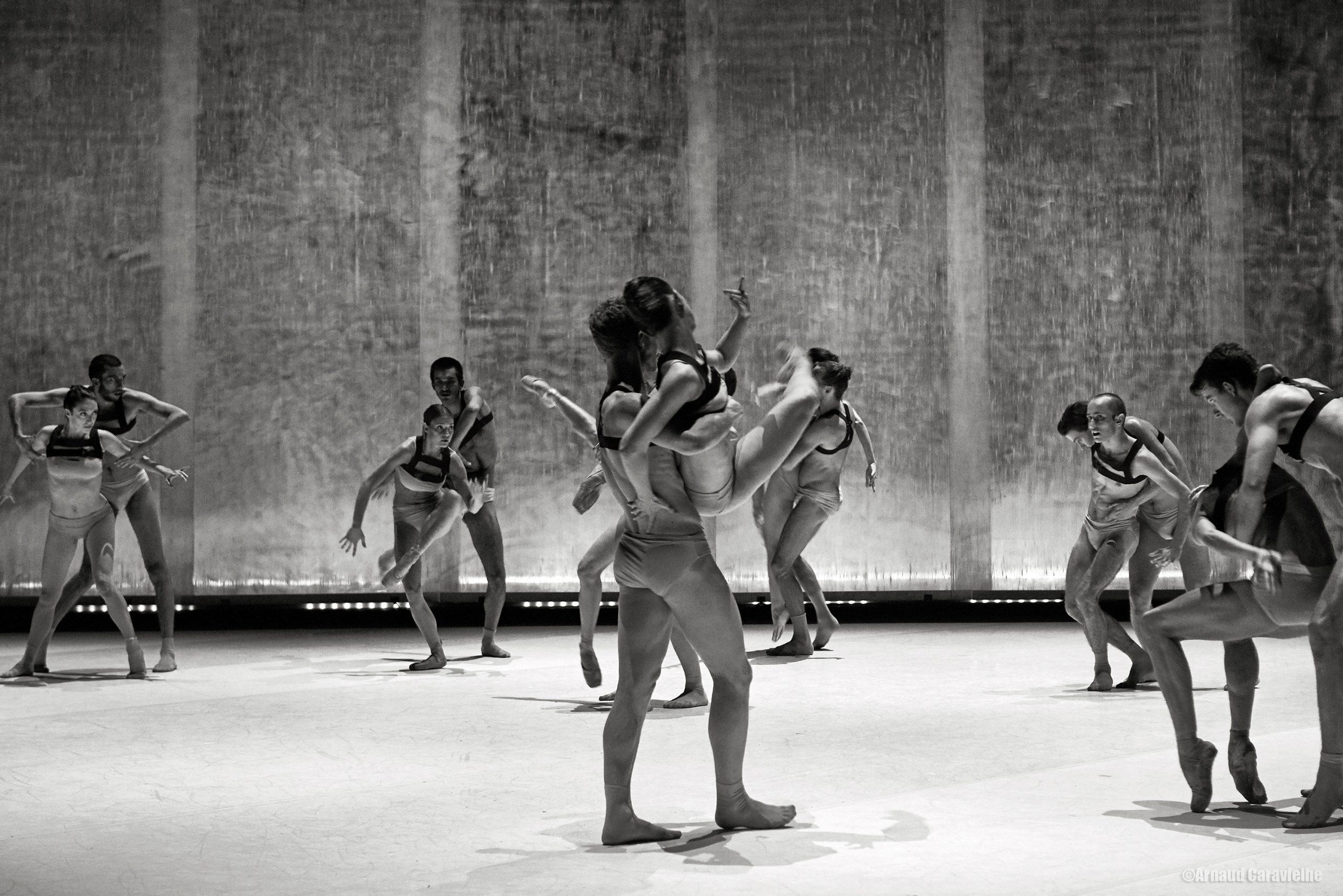 "Jacopo Godani / Dresden Frankfurt Dance Company, ""Extinction of a Minor Species""- Montpellier Danse 2018"